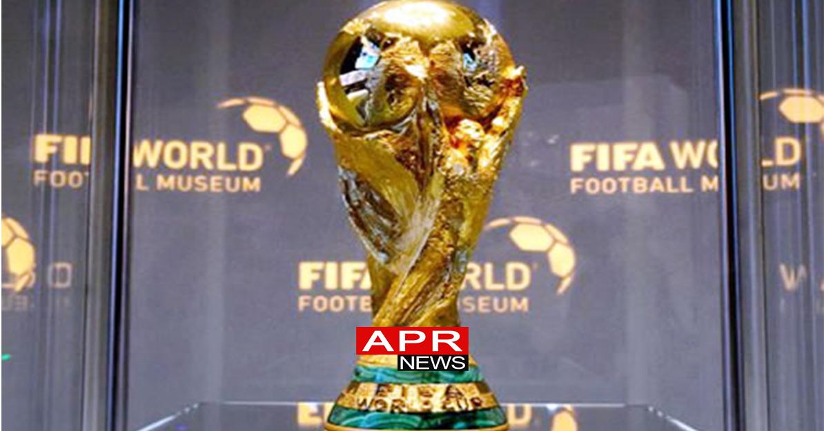 Football le palmar s de la coupe du monde agence de - Vainqueur coupe du monde 2010 ...